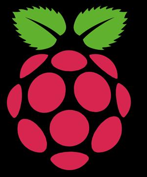 rapsberry pi logo
