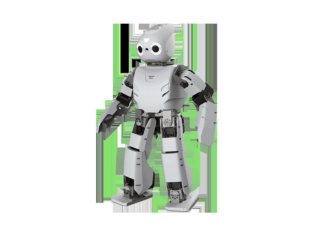 IoT robot